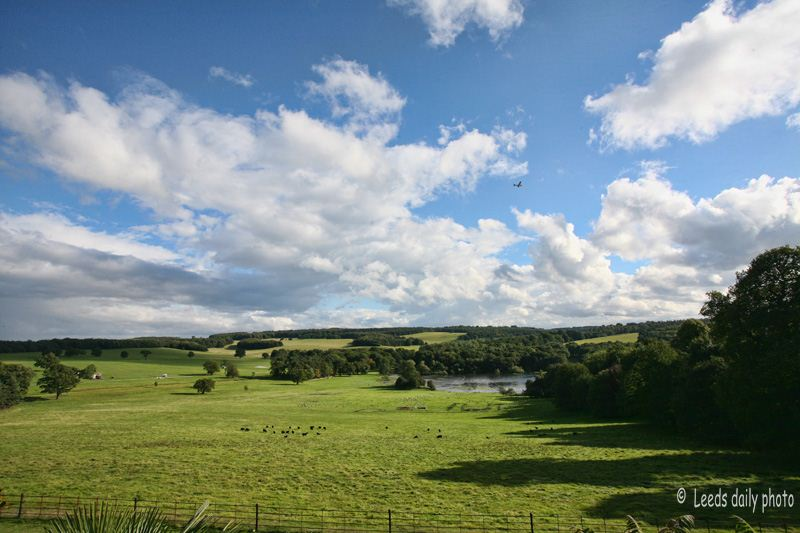 Harewood Estate View