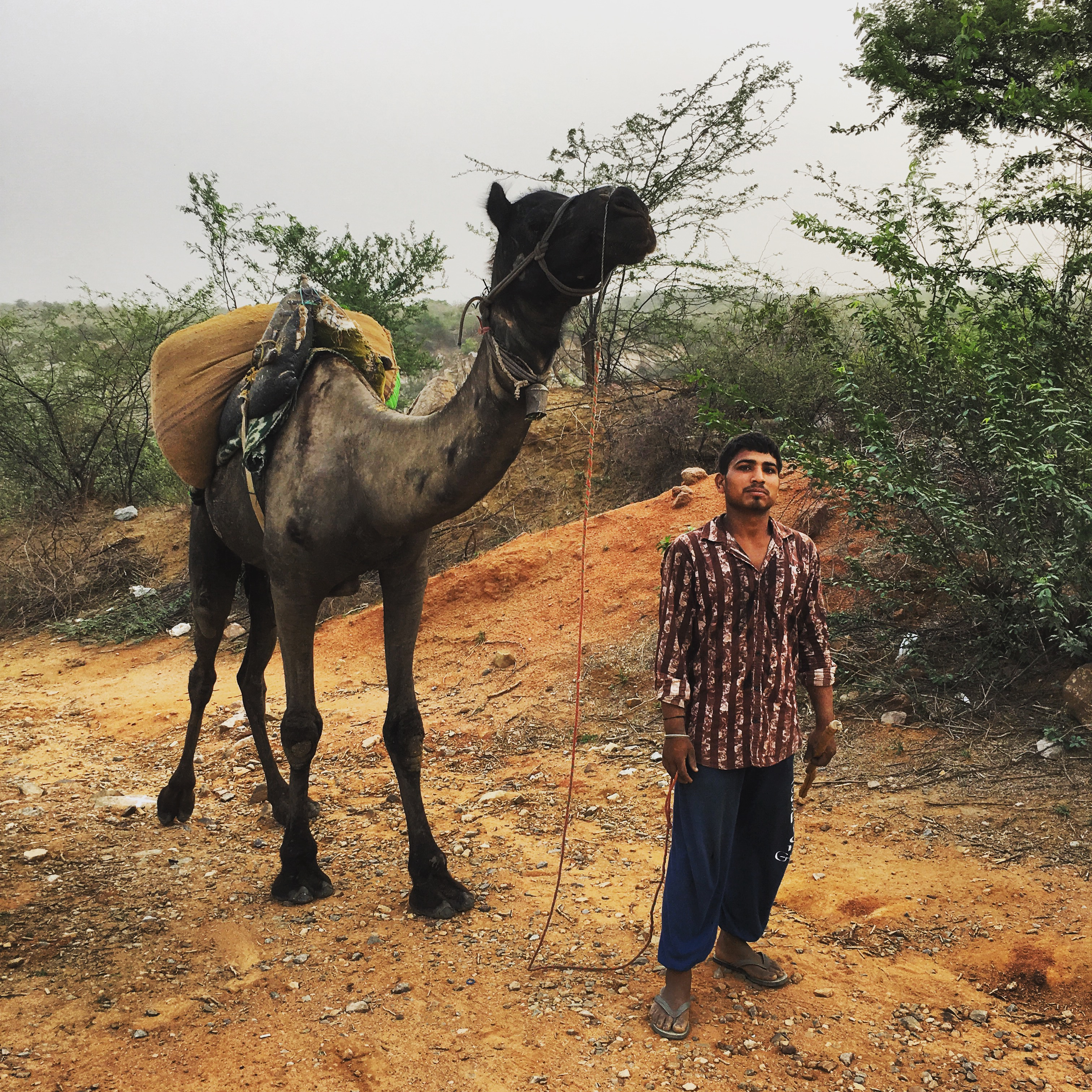 Leopards, camels, thorns: the Asola XC stage race, Delhi
